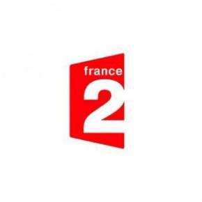 France 2 logo Des mots de minuit