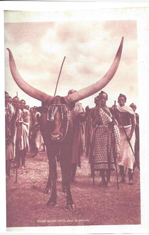 les vaches royales