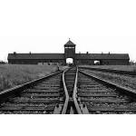Commémoration de la libération des camps