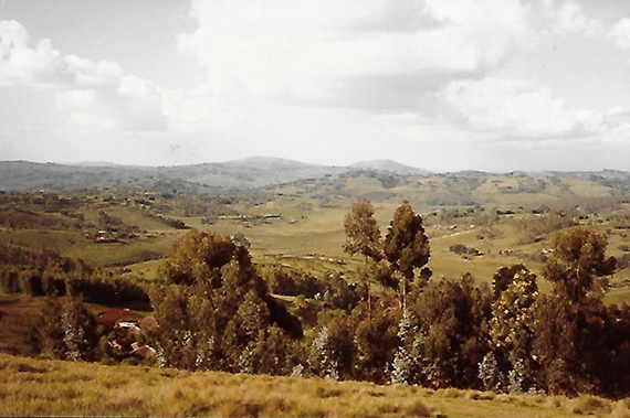 Sur les sentiers du Kirimiro - c'est le nom donné à la région de Gitega - Burundi - Scholastique Mukasonga Rwanda